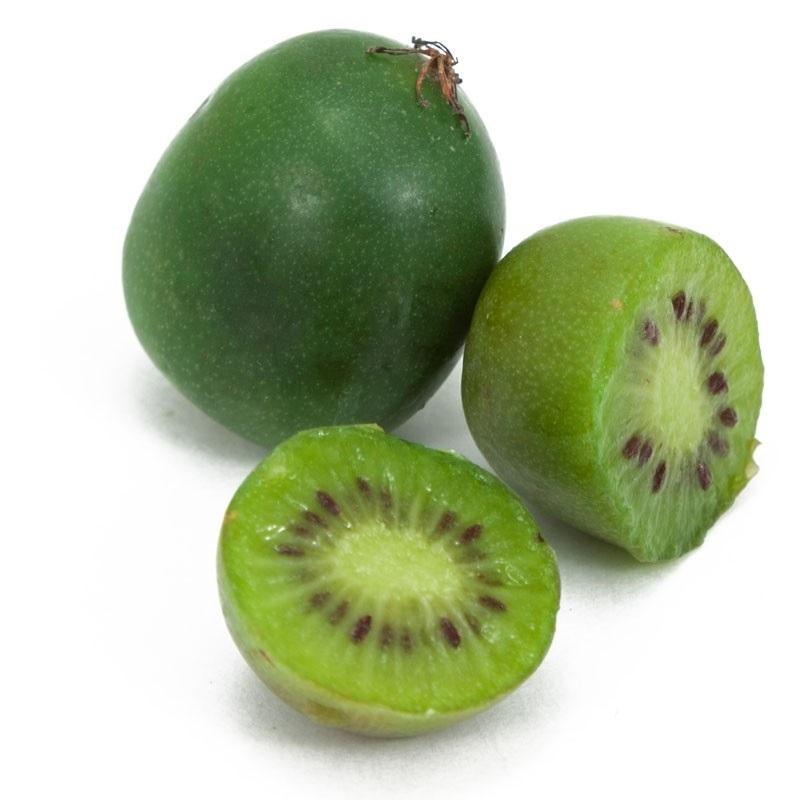 angrestove-kiwi